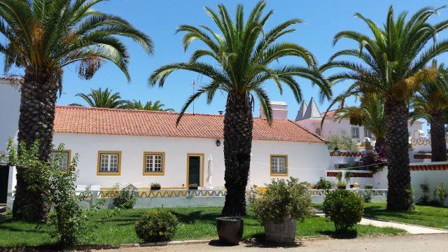 huis met palmen